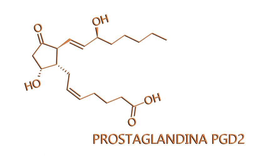 La scoperta della Prostaglandina PGD2 ed il ruolo nella Calvizie